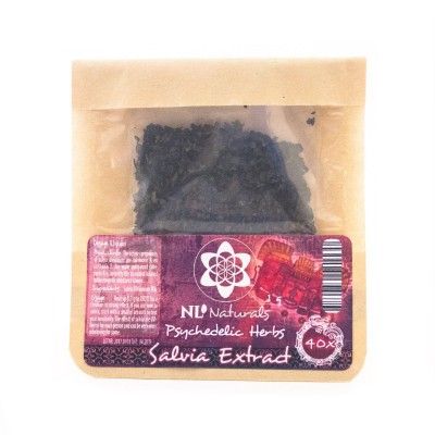 Psilocybe Maestro Magic Truffles
